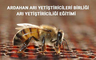 Arı Yetiştiriciliği Eğitimi